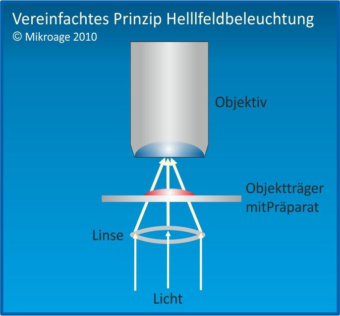 Prinzip Hellfelddarstellung